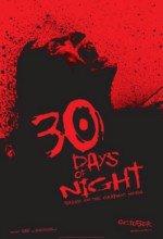 30 Gün Gece