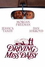 Bayan Daisy Ve Şoförü