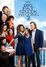 Benim Çılgın Düğünüm 2